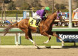 'Chrome Might Be Retired After Classic
