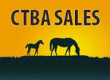 Six Winners from 2013 NorCal Sale