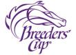 Breeders' Cup Volunteers Sought