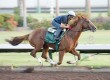 California Chrome Works Six Furlongs