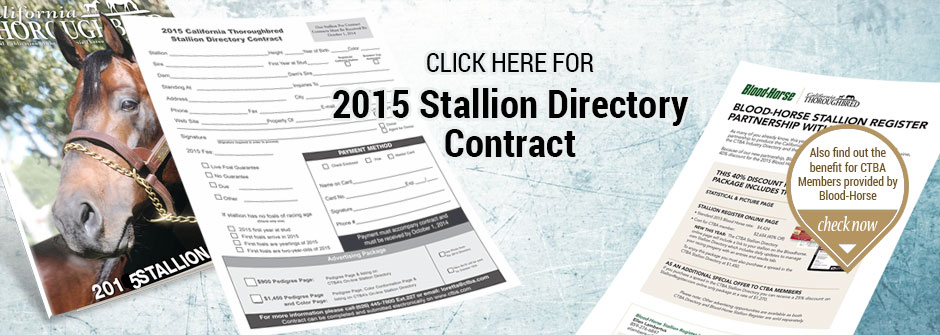 Stallion Directory Contract