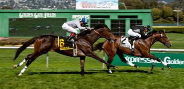 Pepper Crown Wins Rolling Green