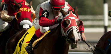 Surtsey Wins at Woodbine