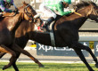 Velvet Mesquite Wins Distaff Handicap