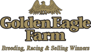 Golden Eagle Closing, Stormin Fever Moving