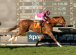 $150,000 Sunshine Millions F&M Turf Sprint – GO WEST MARIE