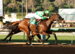 $150,000 Donald Valpredo Cal Cup Sprint – SPIRIT RULES