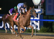 'Chrome Second in Dubai World Cup