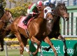 G. G. Ryder Wins S.F. Mile