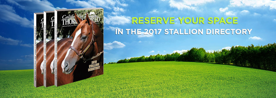Reserve Your Space in the 2017 Stallion Directory