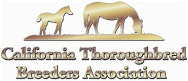 Ballena Vista Releases Stallion Roster