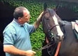 Trainer Barry Abrams Sidelined