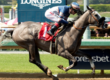 Enola Gray Sizzles in California Distaff