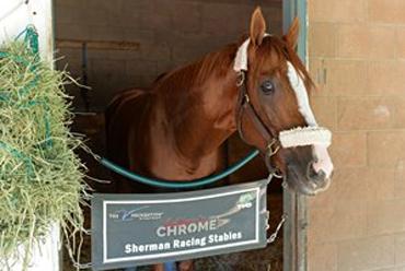 Sherman: 'Chrome Still a Champion'