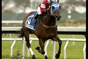Fast and Foxy Wins Bear Fan Stakes