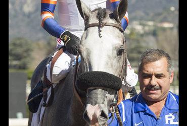 Enola Gray Speeds to Turf Sprint Win