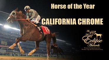 'Chrome Again Horse of the Year