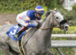Enola Gray Romps in Irish O'Brien