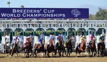 Breeders' Cup Supports Gregson Foundation
