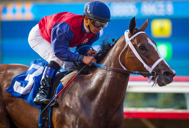 Miss Sunset Enters Campanille