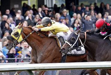 Sharkzilla Kills it in Auburn Stakes