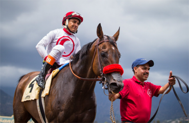 Retirement Considered for Big Macher