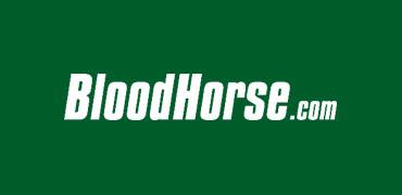 Bloodhorse.com on San Luis Rey Fire