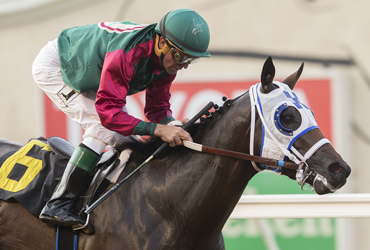Bookies Luck Prominent in Turf Sprint