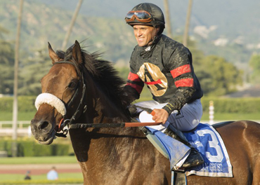 Shaman Ghost to Stand at Tommy Town