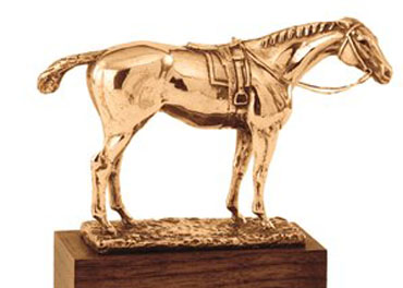 Special Eclipse Award for First Responders