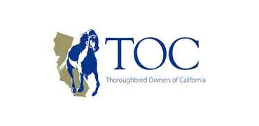 Lovingier Appointed to TOC Board