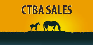 NorCal Yearling Sale Set for Aug. 13
